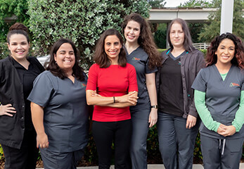 Veterinary Dermatology Team